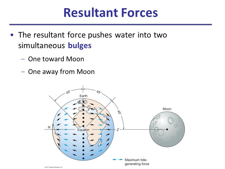 Resultant Forces The resultant force pushes water into two simultaneous bulges. One toward Moon.