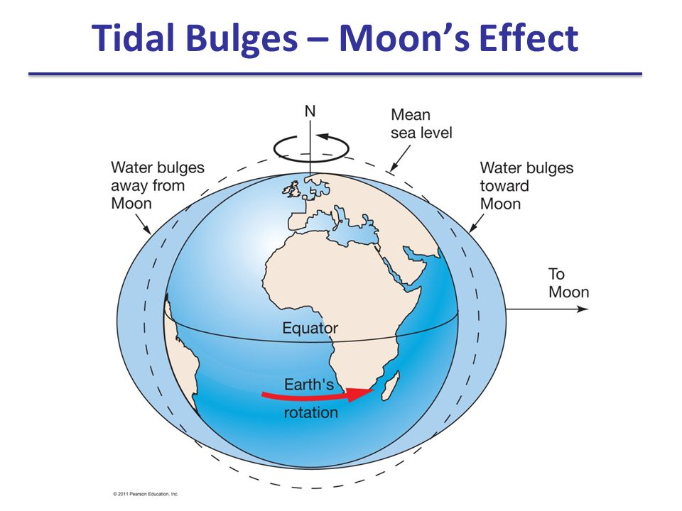 Tidal Bulges – Moon's Effect