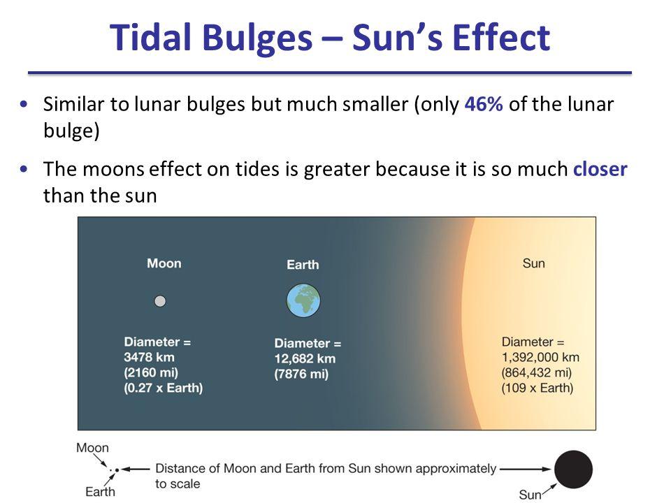 Tidal Bulges – Sun's Effect