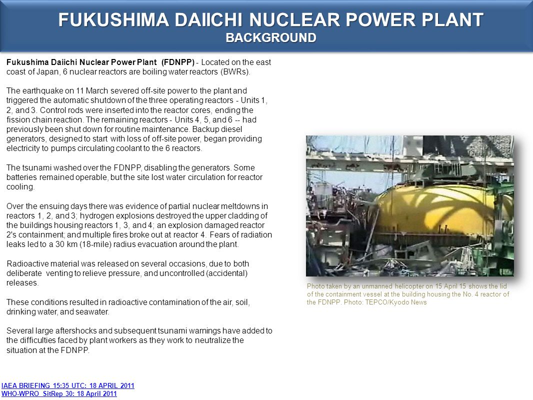 FUKUSHIMA DAIICHI NUCLEAR POWER PLANT BACKGROUND