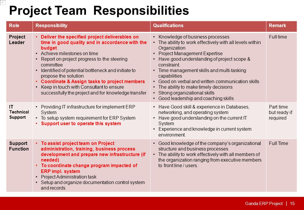 Project Team Responsibilities