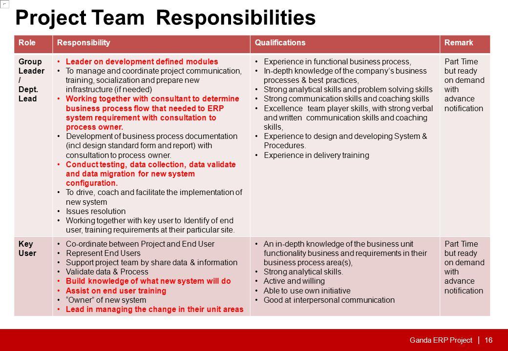 17 Digiwin Service Team ERP MFG Consultant ERP FIN Consultant
