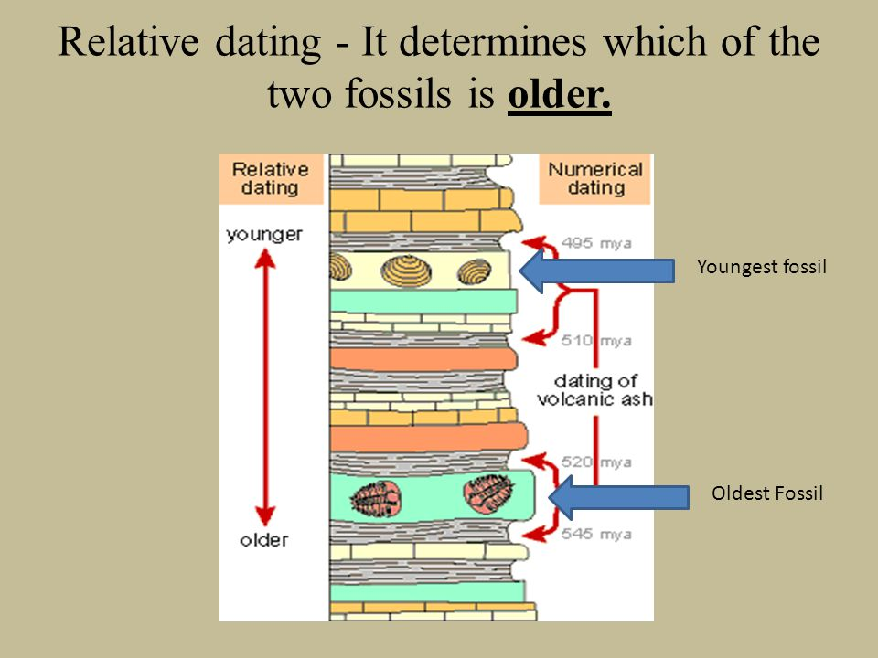 Relative dating - It determines which of the two fossils is older.