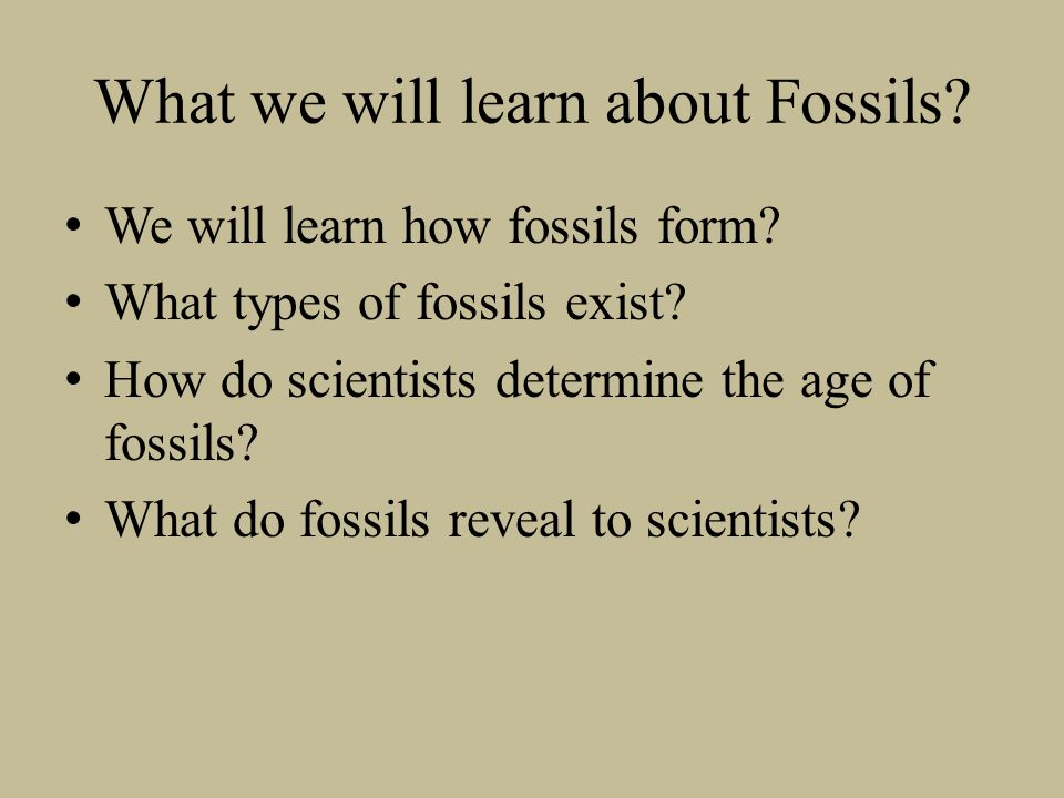 What we will learn about Fossils