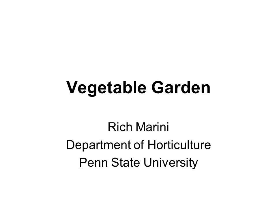Rich Marini Department of Horticulture Penn State University