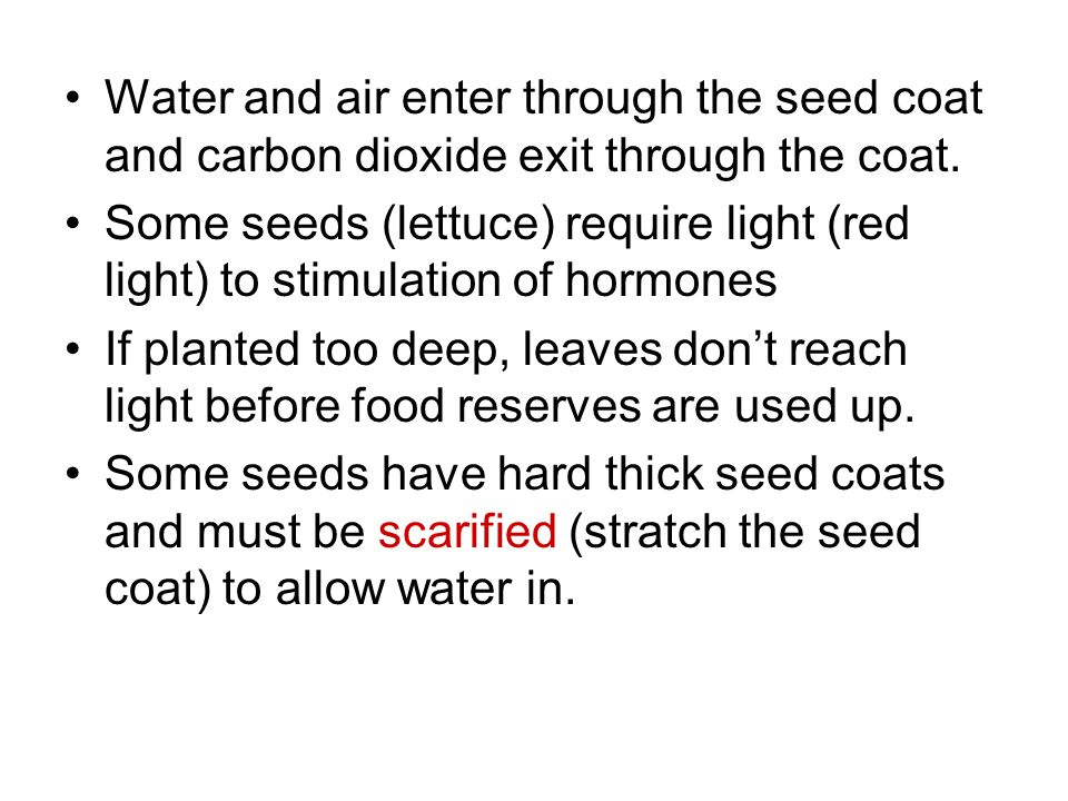 Water and air enter through the seed coat and carbon dioxide exit through the coat.