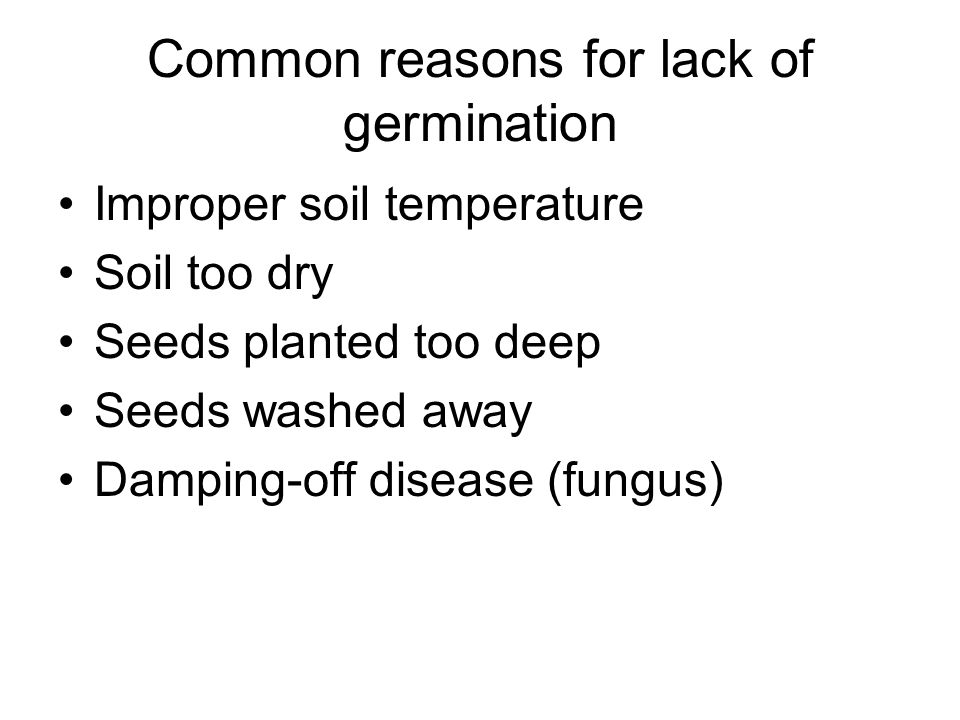Common reasons for lack of germination