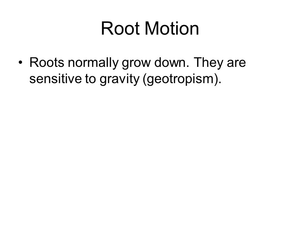 Root Motion Roots normally grow down. They are sensitive to gravity (geotropism).