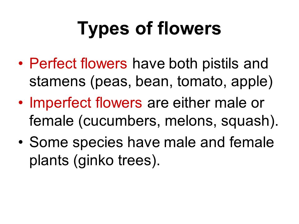 Types of flowers Perfect flowers have both pistils and stamens (peas, bean, tomato, apple)