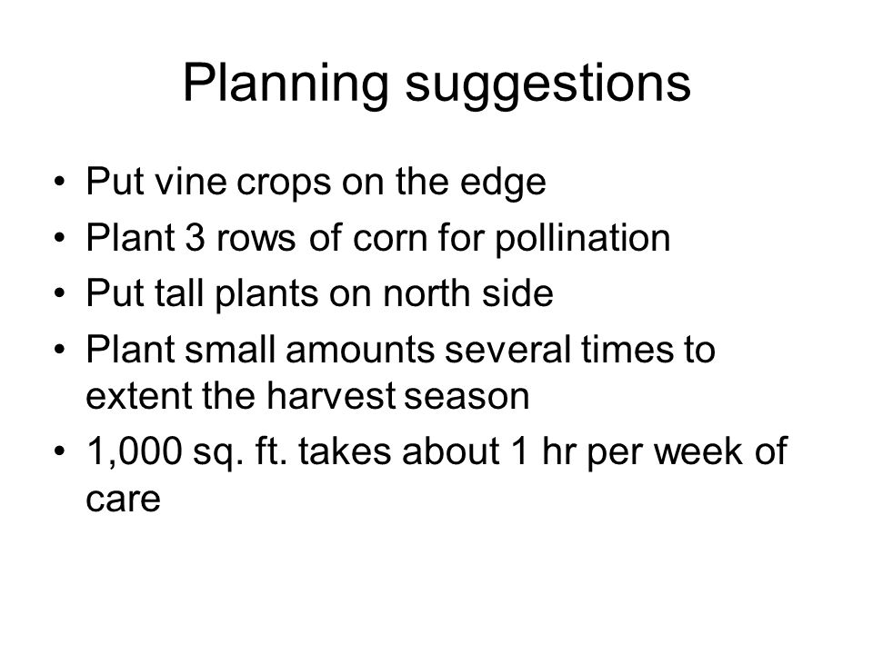 Planning suggestions Put vine crops on the edge