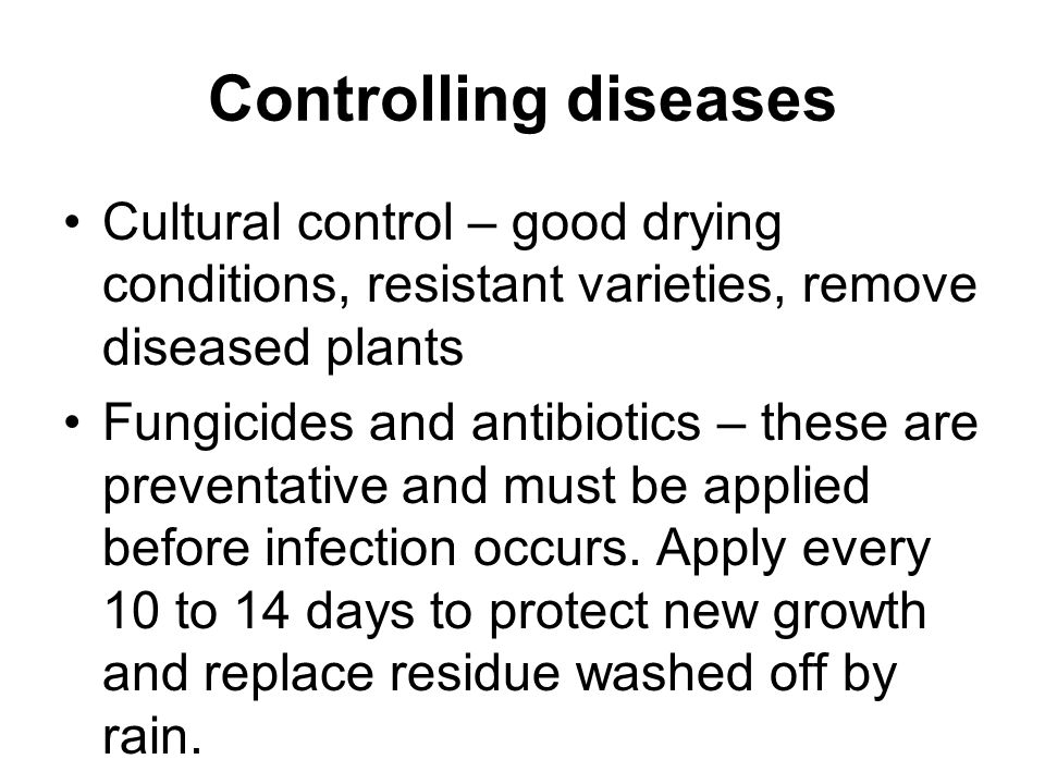 Controlling diseases Cultural control – good drying conditions, resistant varieties, remove diseased plants.