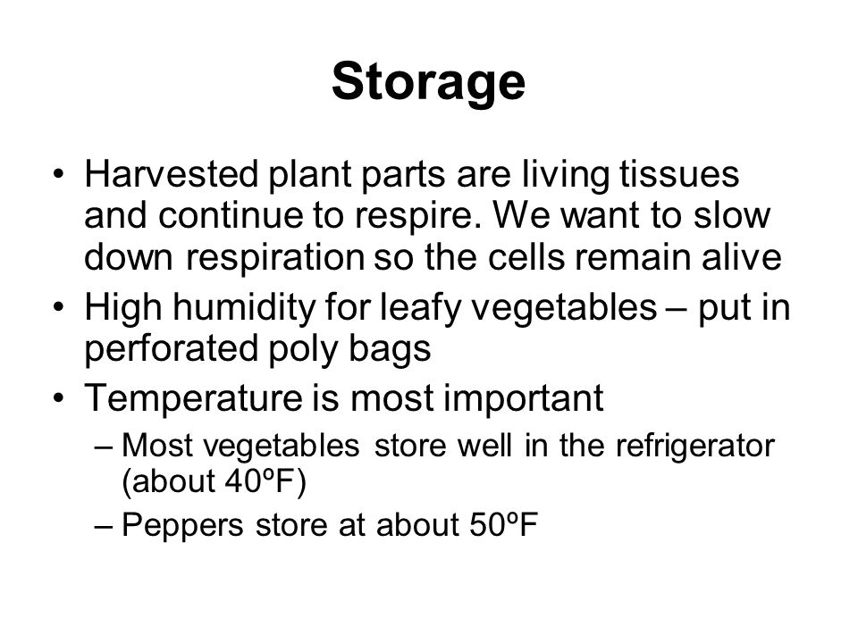 Storage Harvested plant parts are living tissues and continue to respire. We want to slow down respiration so the cells remain alive.