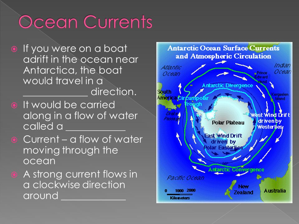 Ocean Currents If you were on a boat adrift in the ocean near Antarctica, the boat would travel in a _____________ direction.
