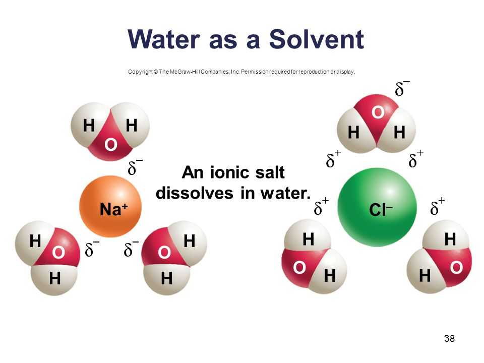 Water as a Solvent O H H H H O An ionic salt dissolves in water. Na+