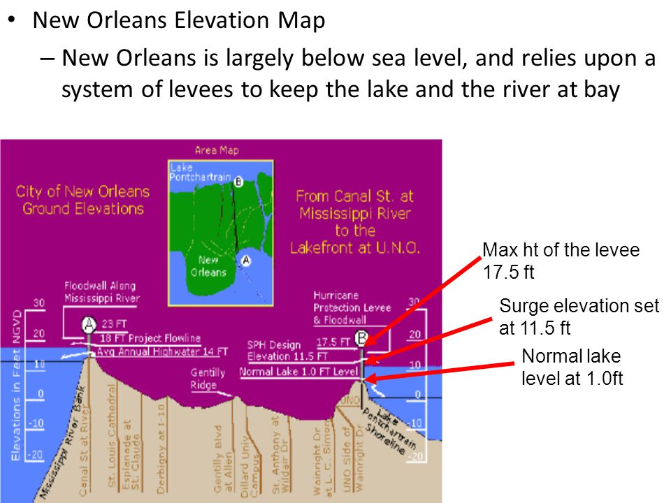 New Orleans Elevation Map