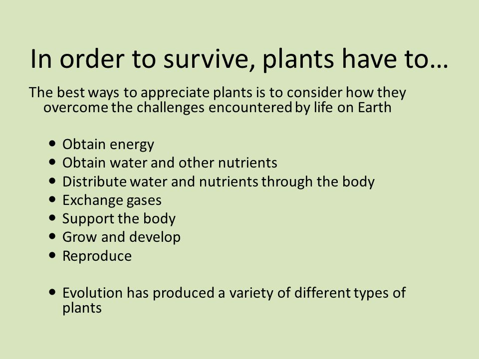 In order to survive, plants have to…