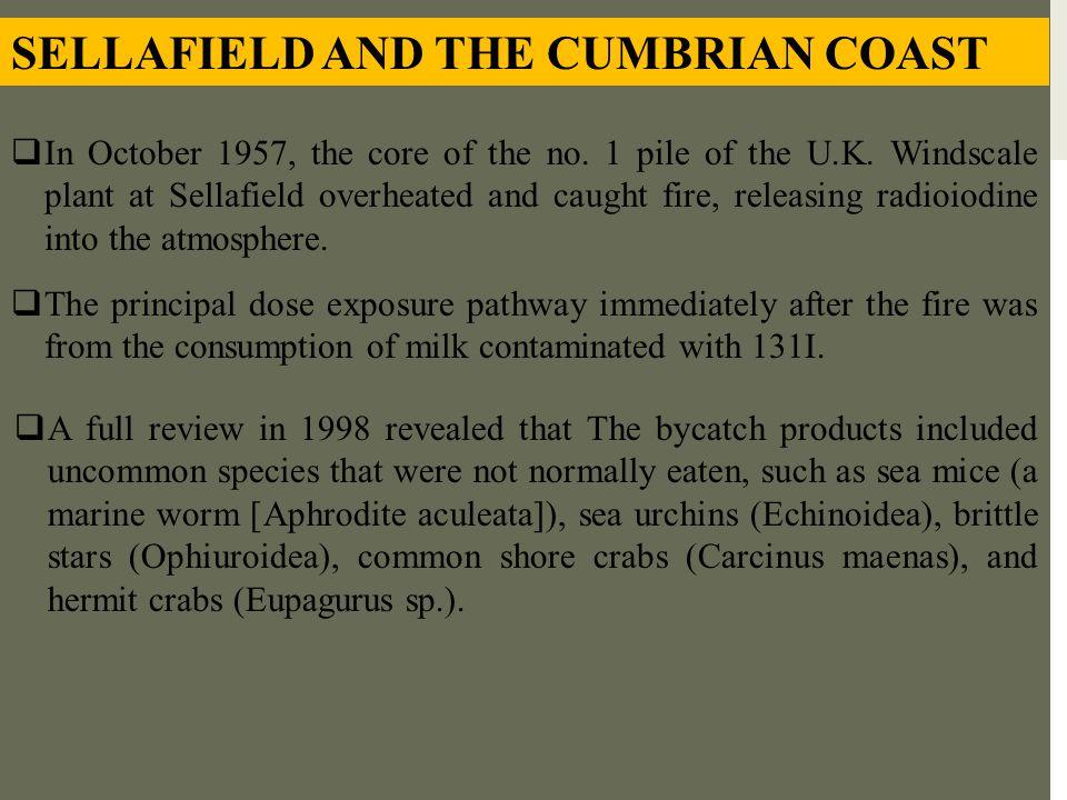 SELLAFIELD AND THE CUMBRIAN COAST