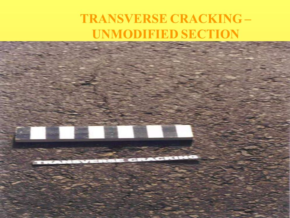 TRANSVERSE CRACKING –UNMODIFIED SECTION
