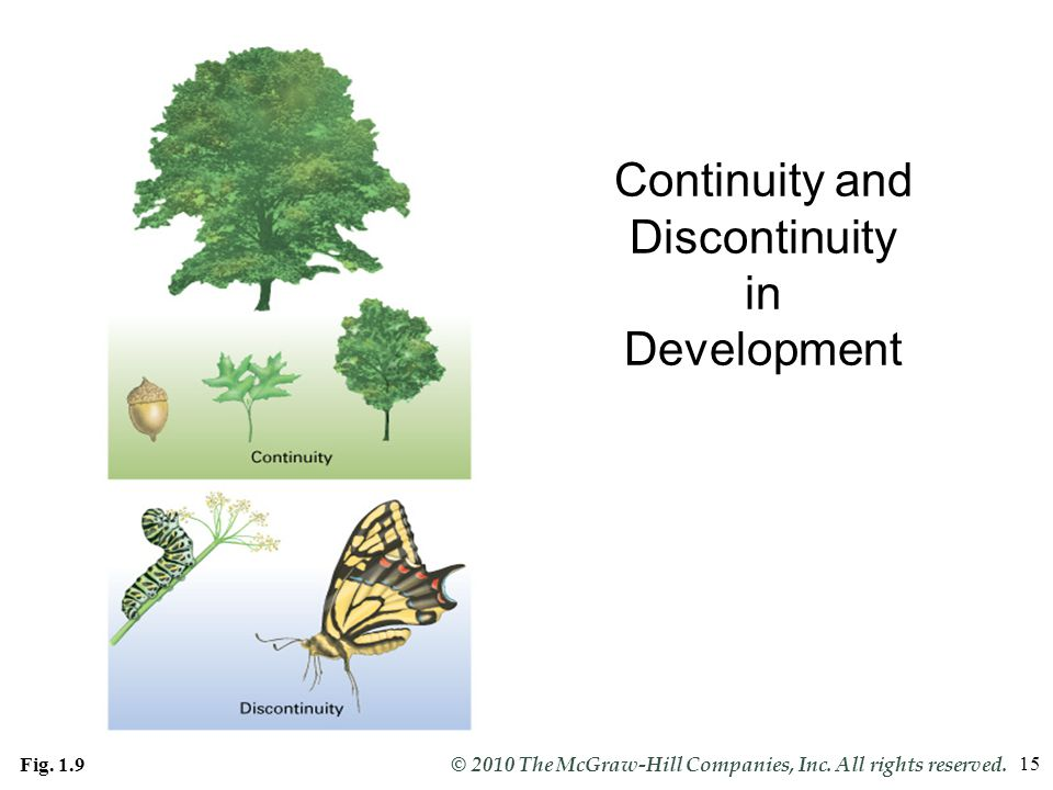 Continuity and Discontinuity in Development