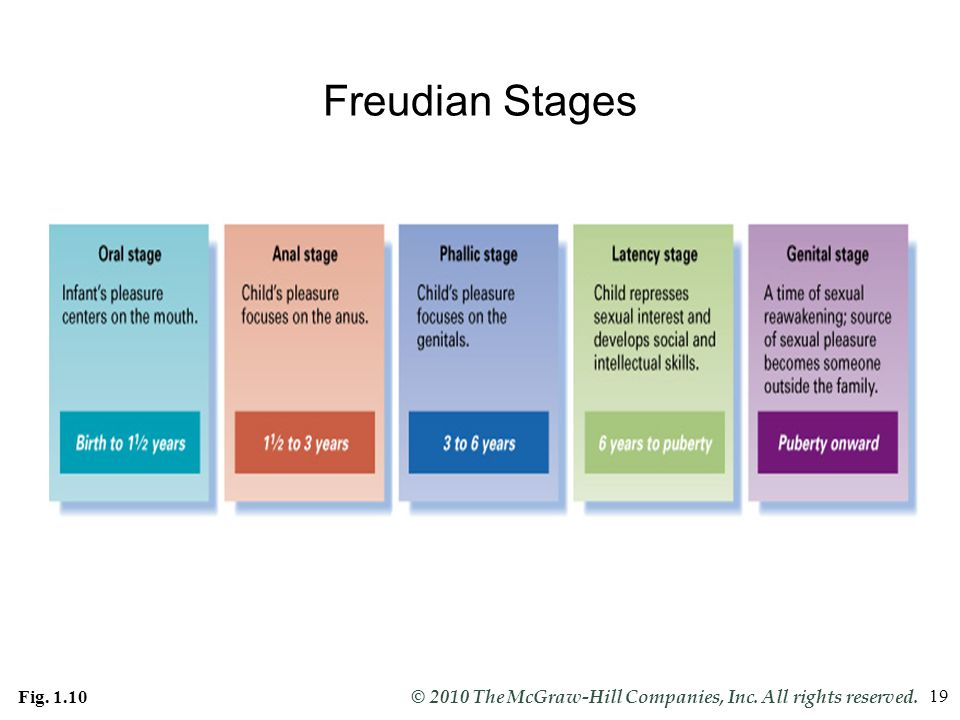 Freudian Stages Fig. 1.10