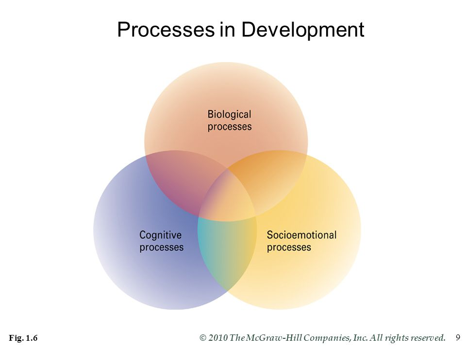 Processes in Development