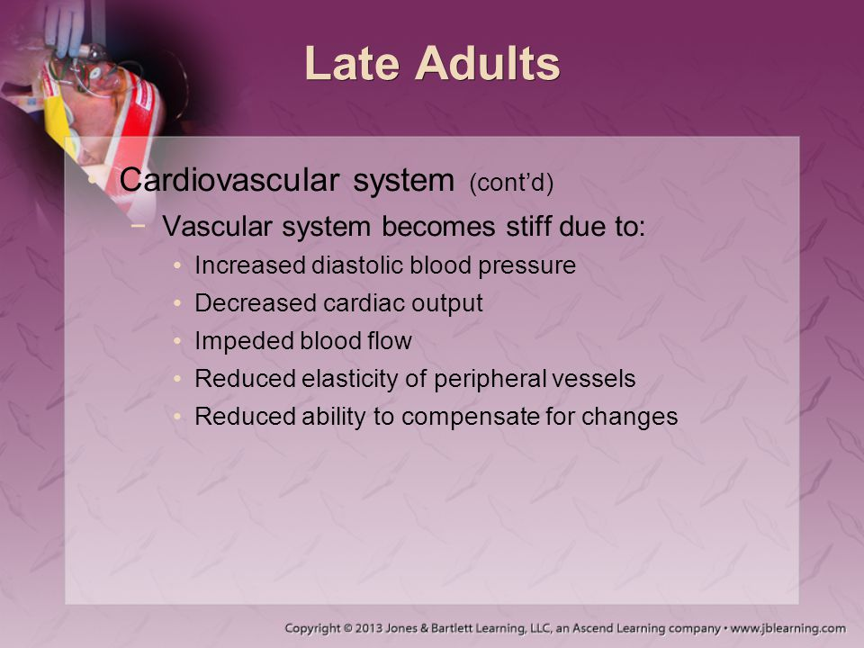 Late Adults Cardiovascular system (cont'd)