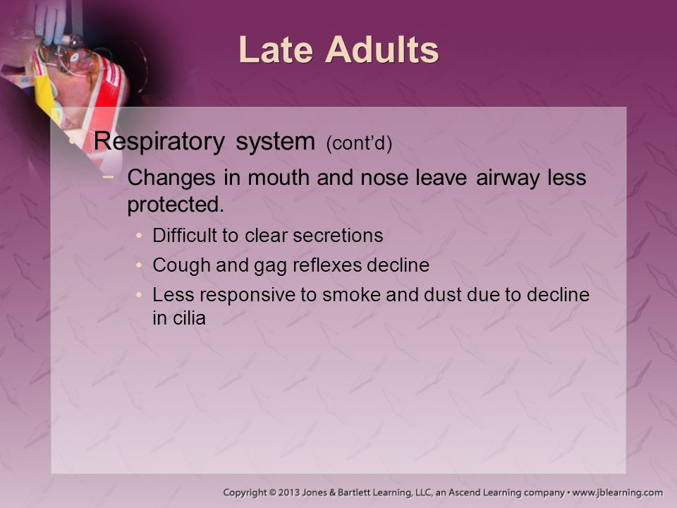 Late Adults Respiratory system (cont'd)