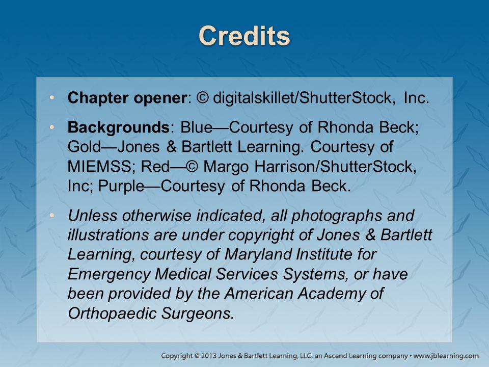 Credits Chapter opener: © digitalskillet/ShutterStock, Inc.