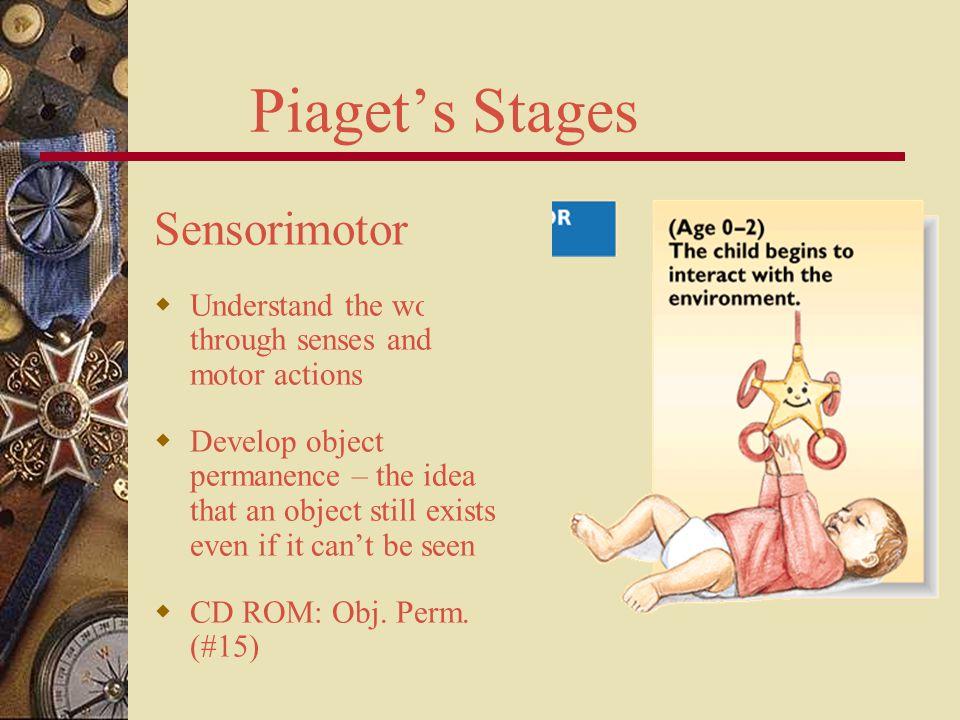 Piaget's Stages Sensorimotor