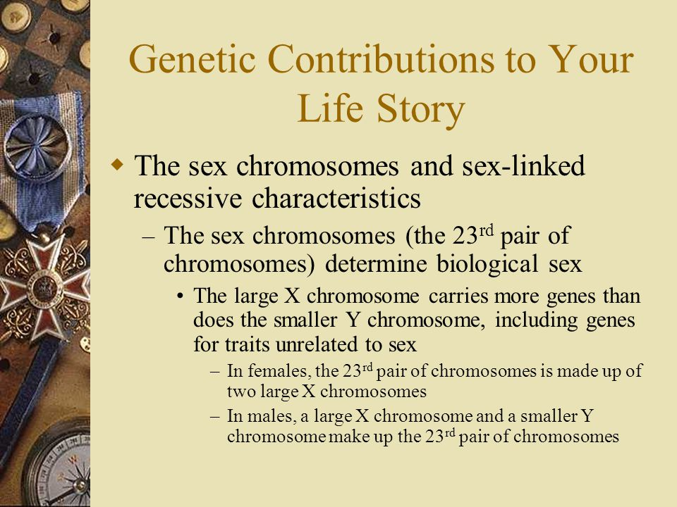 Genetic Contributions to Your Life Story