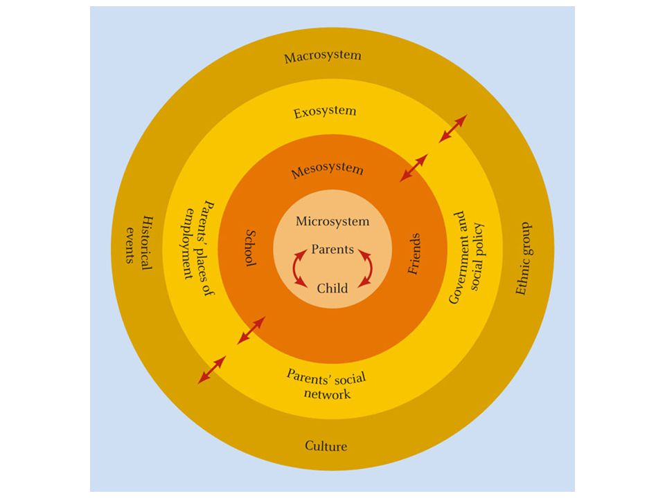 Caption: Bronfenbrenner's ecological approach emphasizes the interaction across different systems in which people operate.