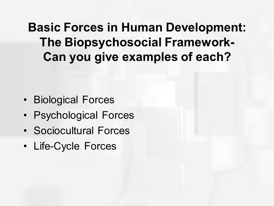 Basic Forces in Human Development: The Biopsychosocial Framework- Can you give examples of each