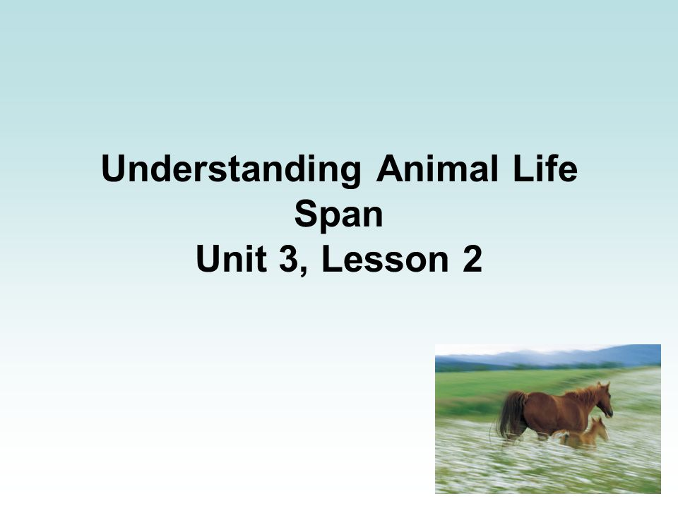 Understanding Animal Life Span Unit 3, Lesson 2