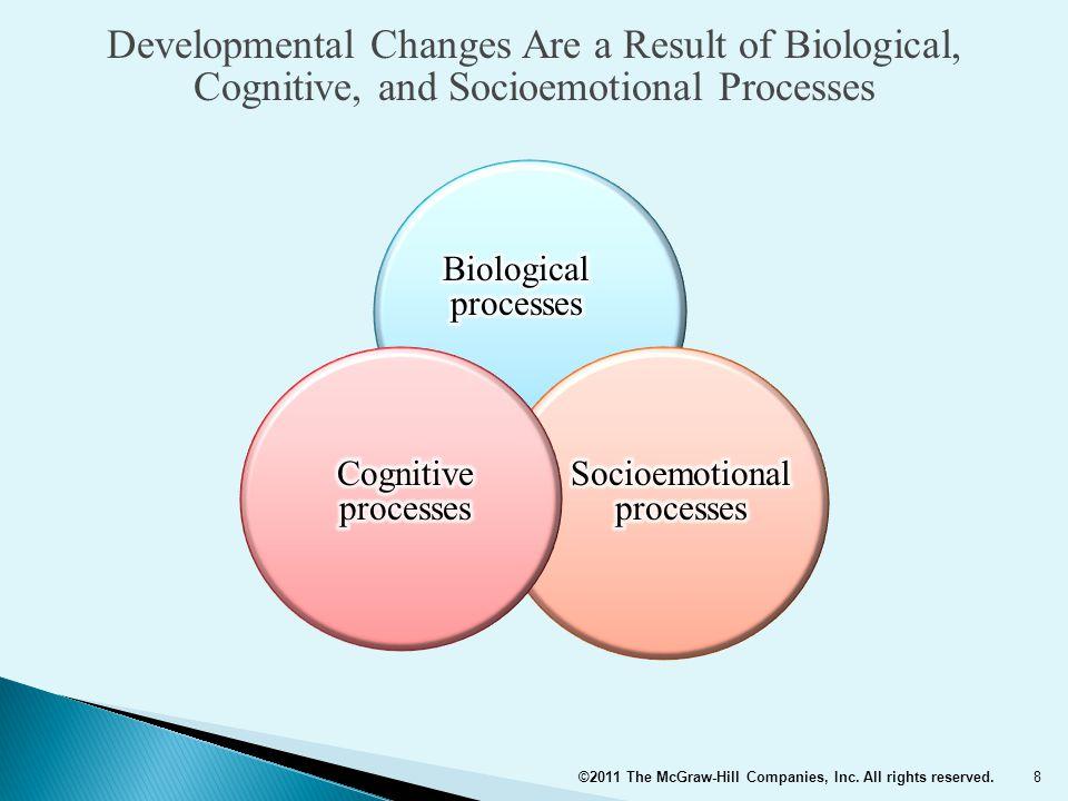 Socioemotional processes