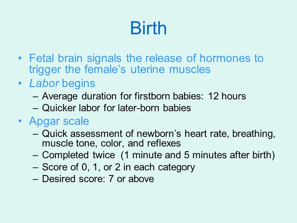 Birth Fetal brain signals the release of hormones to trigger the female's uterine muscles. Labor begins.