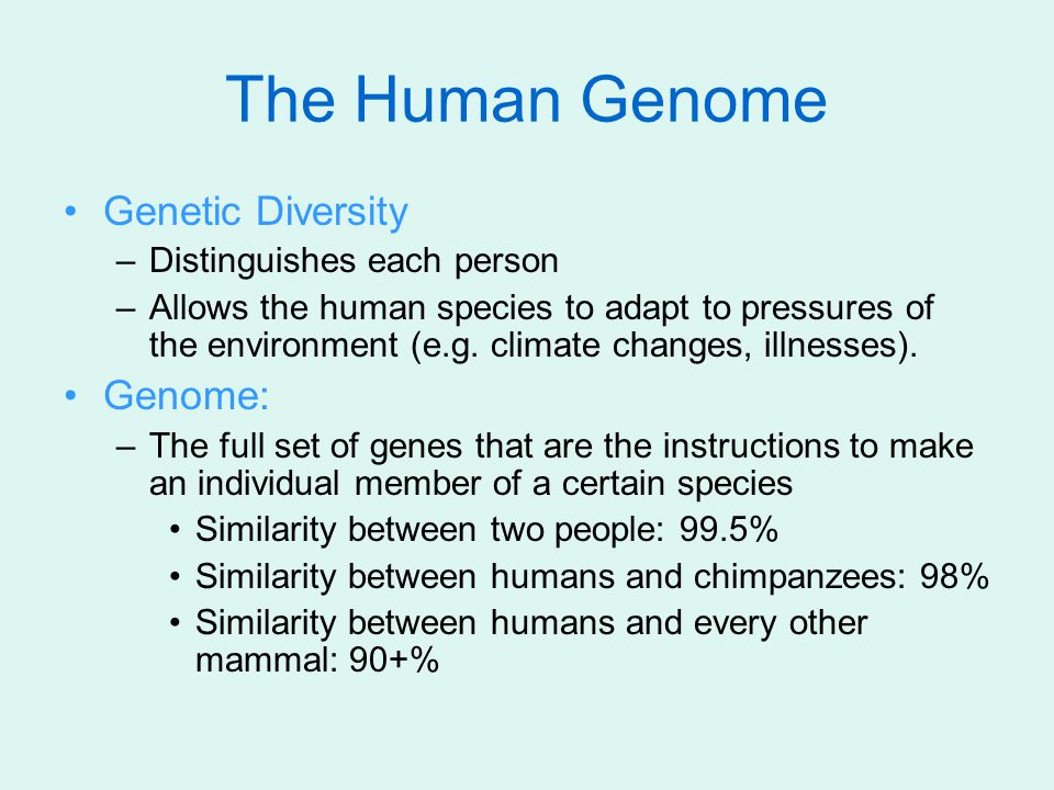 The Human Genome Genetic Diversity Genome: Distinguishes each person