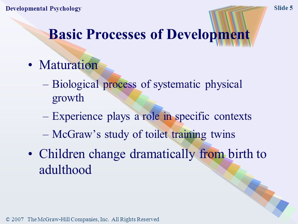 Basic Processes of Development