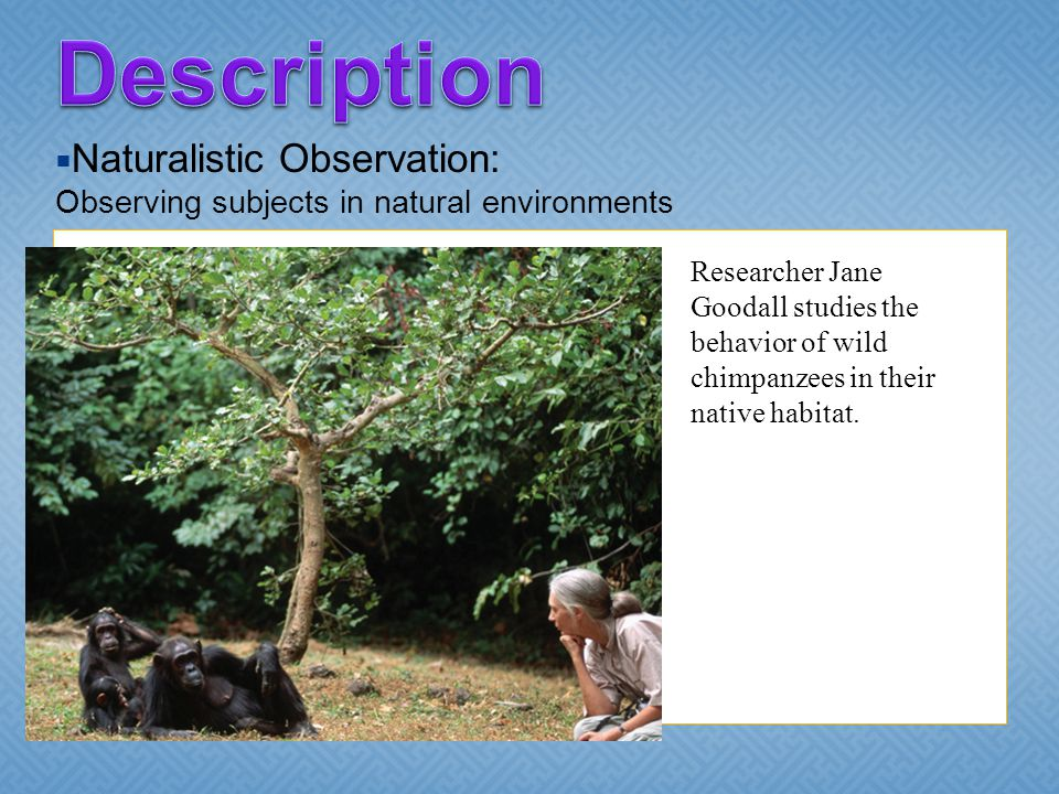 Description Naturalistic Observation: Observing subjects in natural environments.