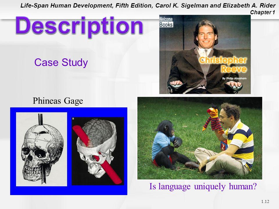 Description Case Study Phineas Gage Is language uniquely human