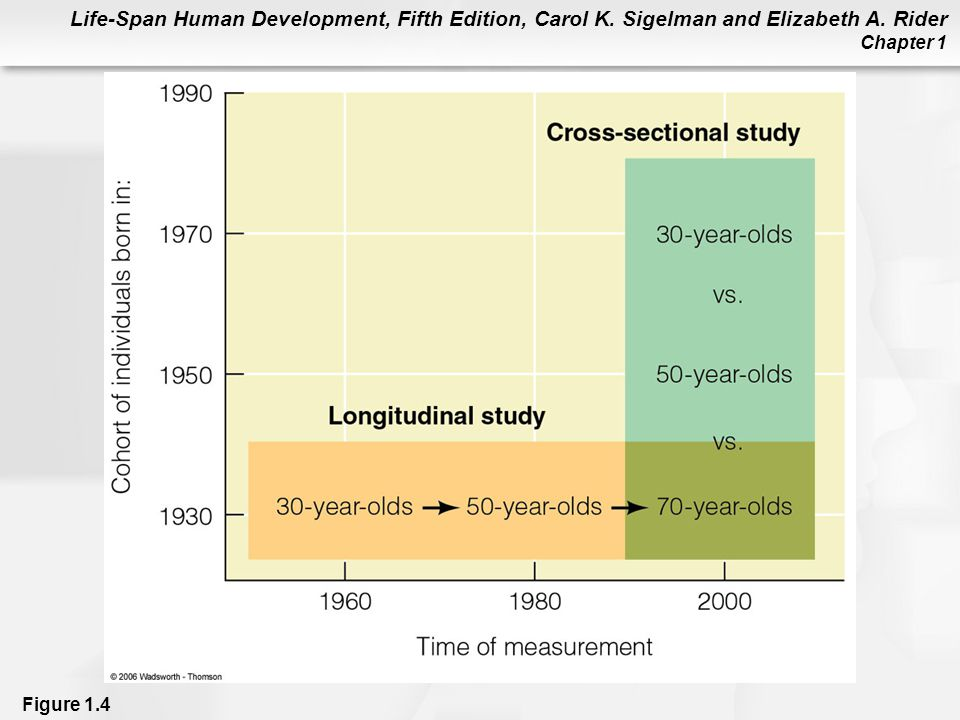 Figure 1.4 Cross-sectional and longitudinal studies of development from age 30 to age 70.