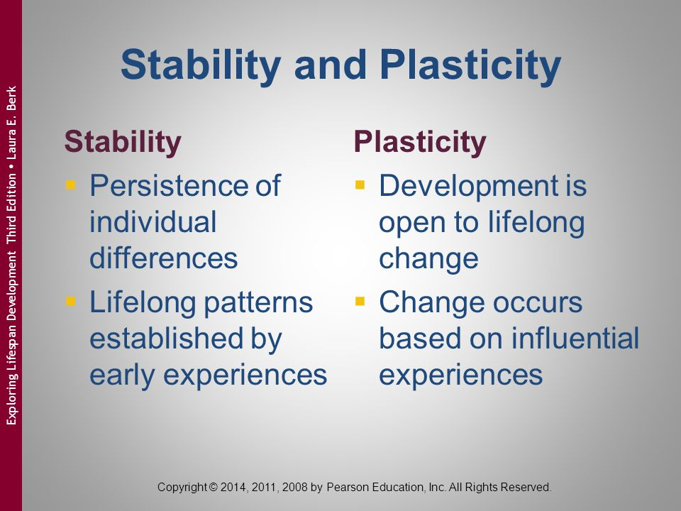 Stability and Plasticity