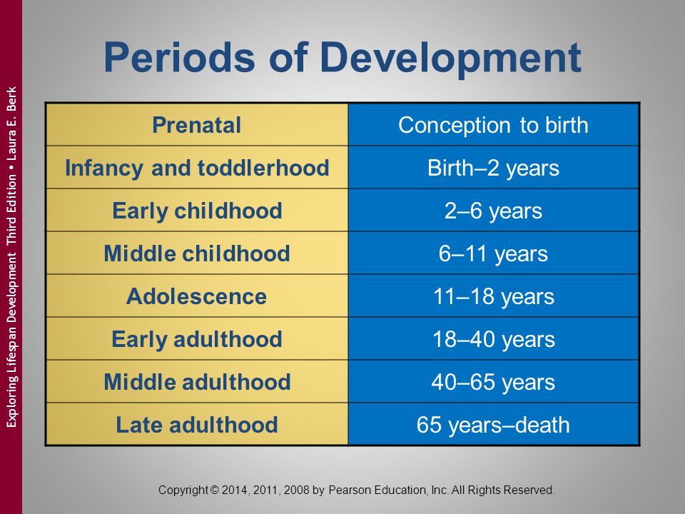 Periods of Development Infancy and toddlerhood