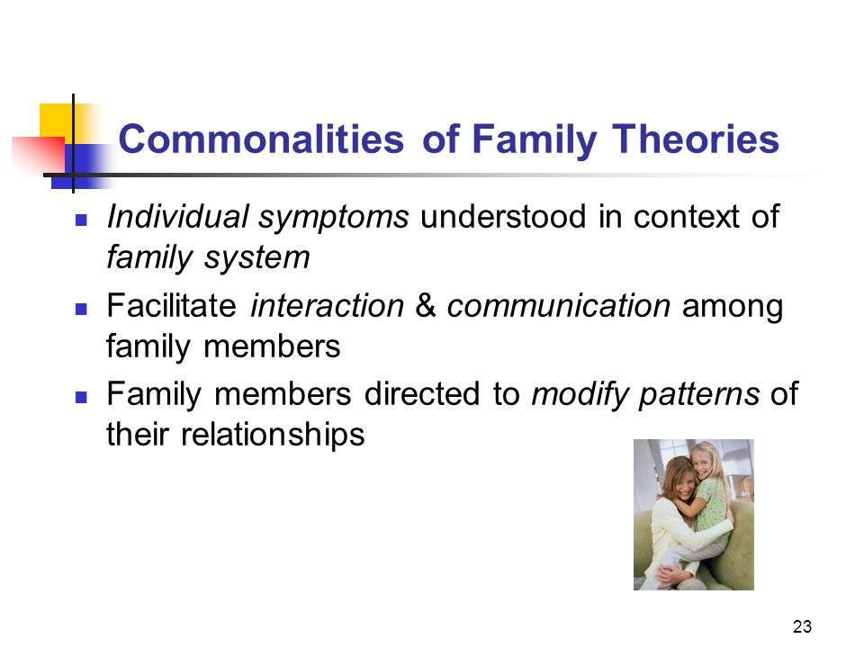Commonalities of Family Theories