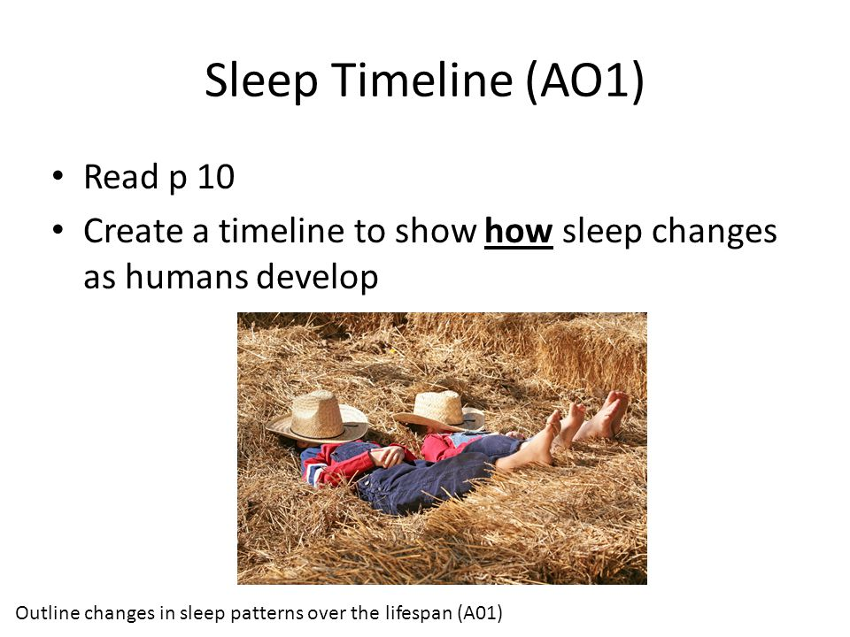 Sleep Timeline (AO1) Read p 10