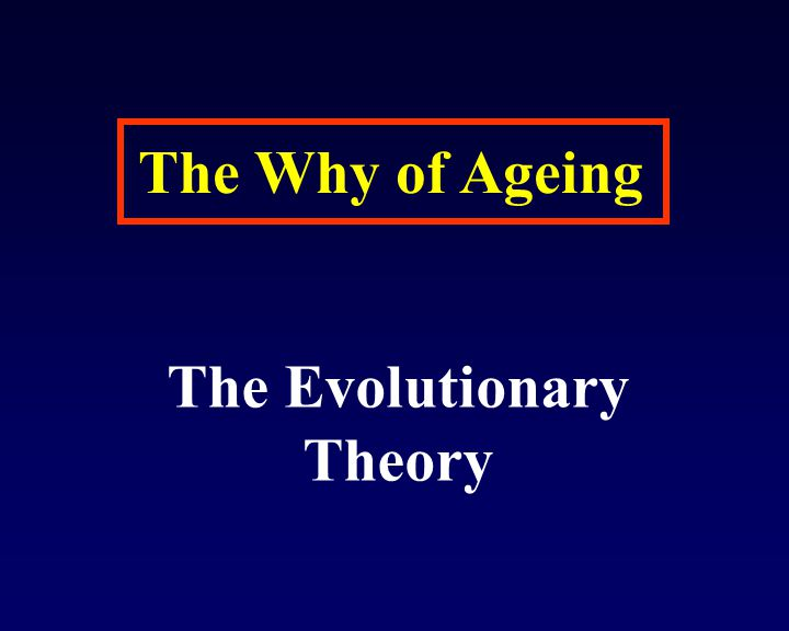 The Evolutionary Theory
