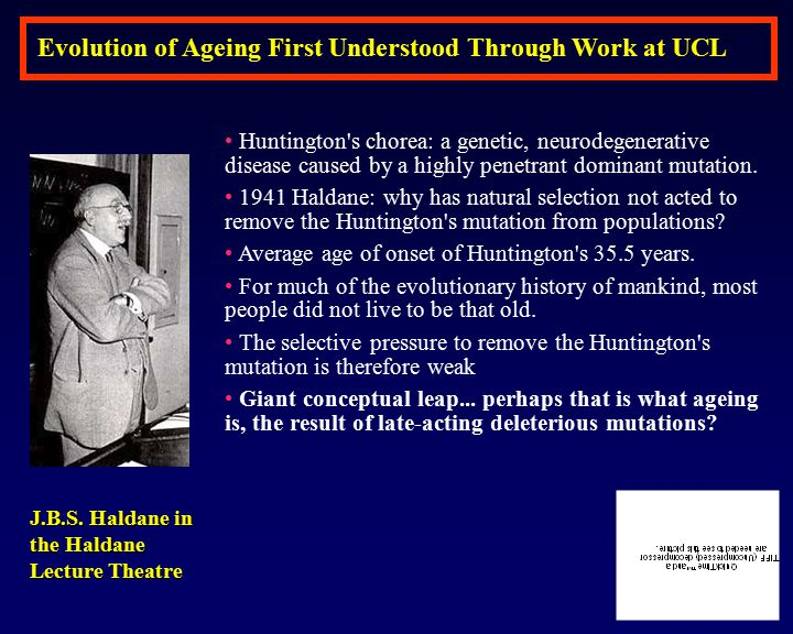 Evolution of Ageing First Understood Through Work at UCL