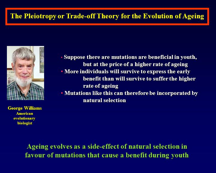 The Pleiotropy or Trade-off Theory for the Evolution of Ageing