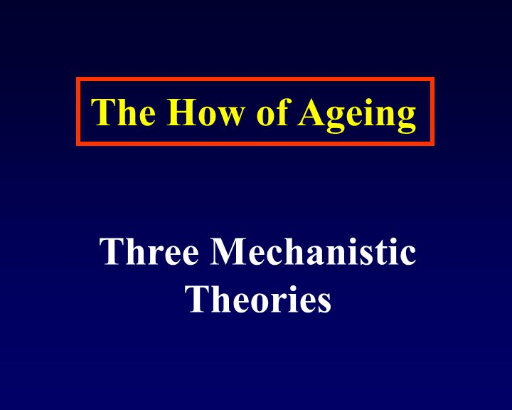 Three Mechanistic Theories