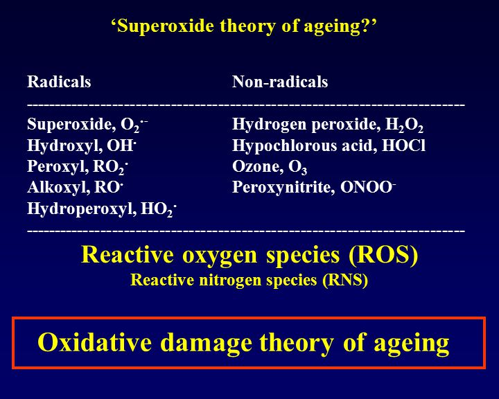 Reactive oxygen species (ROS) Reactive nitrogen species (RNS)