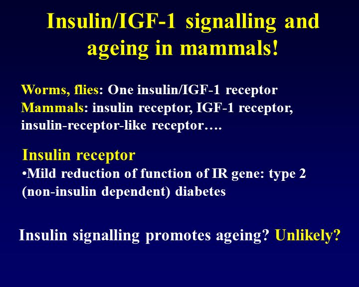Insulin/IGF-1 signalling and ageing in mammals!